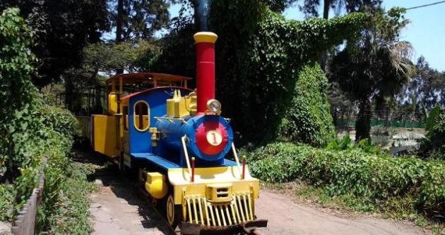 Vivero de chimbote proyecta embellecer recorrido del tren for Proyecto vivero forestal pdf